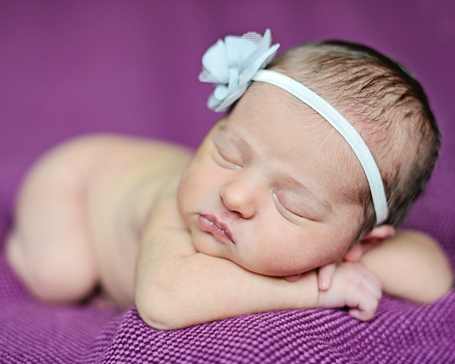 newborn portraits, newborn pictures
