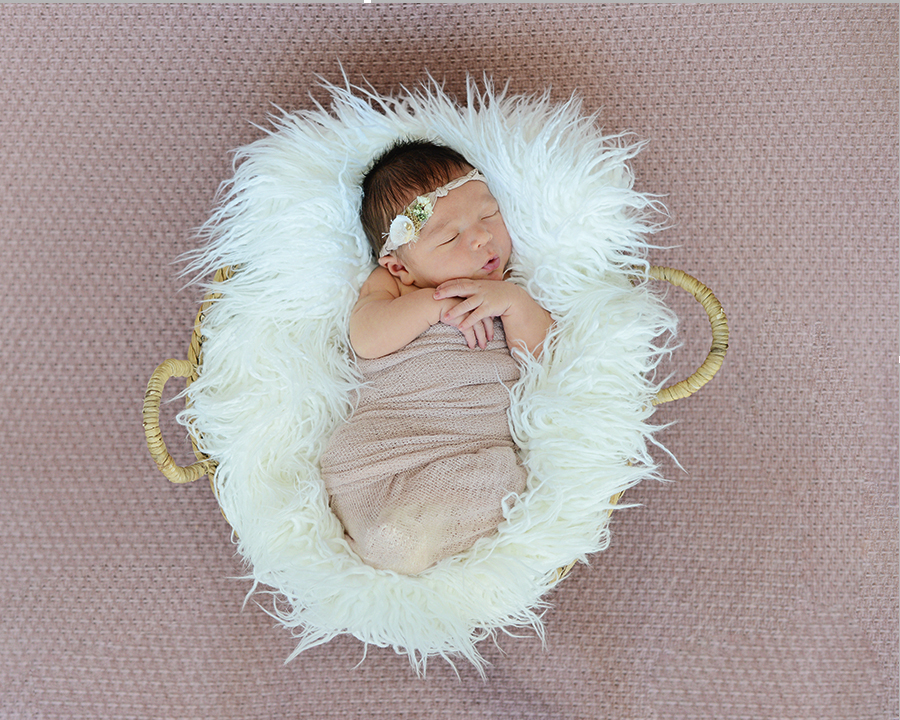 Newborn Photography, Columbia City Photographer