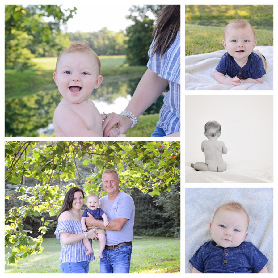 6 month old Portraits